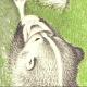Jsuar065