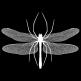 Spiderfly Studios