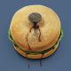 Дебургер