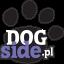 dogside.pl