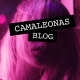 camaleonasblog