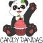 Candy Pandas