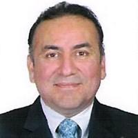Mauricio Martínez Cedillo