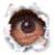 AlpineBob's avatar