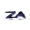 Zion Adebisi