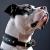 Ruth Crisler's avatar