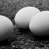 eggshellwhite