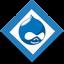 Drupal Website Developer