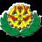 Instituto Tecnológico Veracruzano