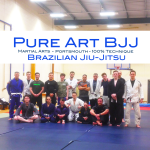 Pure Art BJJ Brazilian Jiu-Jitsu Portsmouth