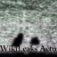 WIKILEAKS ACTU