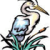 charles ross's avatar