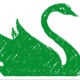 The Green Swan