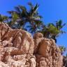 Come aprire  una attività a Tenerife Sud