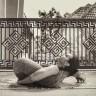 maya yogini