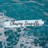 chasingseagulls