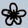 lexicartis