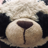 pandaeatsfood