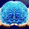 mindupgrade