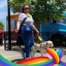 Psychic-Medium-Author Ronda Del Boccio