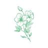 Hogardeplantas