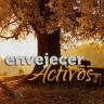 Envejecer activos