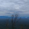 Rani Narayanan