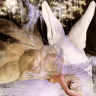 Magick Thoughts by AmandaMagick (blogger for real life and a virtual life)