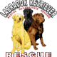 Labrador Retriever Rescue, Inc.