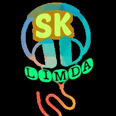 Sarrainodu 2017 Full Hindi Dubbed Movie Direct Hdrip Download Link S K Limda Com