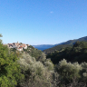 Yogalovin´Retreats in Croatia