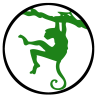 Patrycja | Zielona Małpa